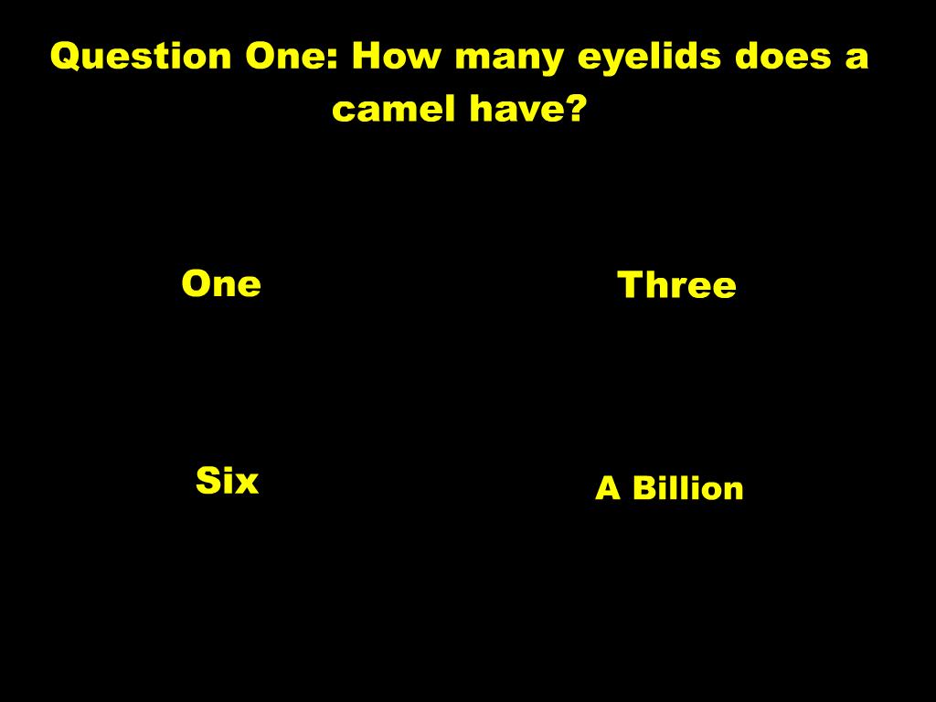 Labai sunkus klausimynas EN