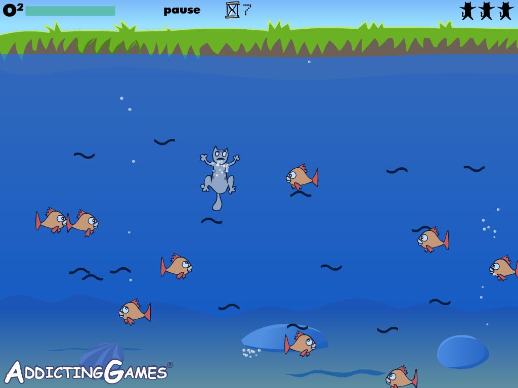 Žvejys katinas