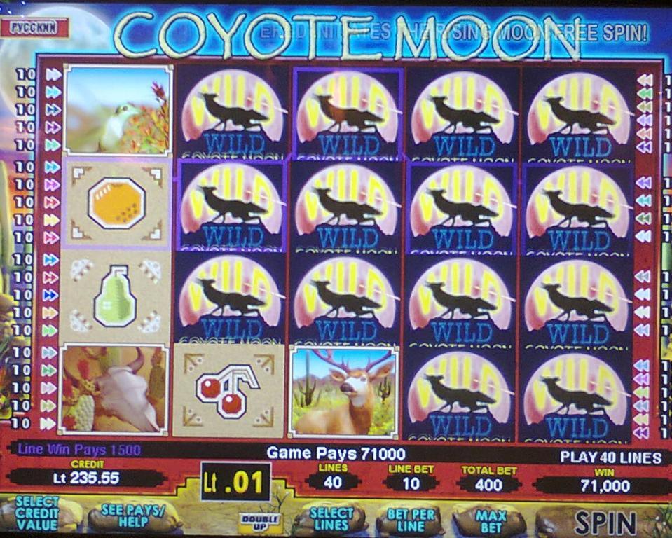 Kojotų mėnulis, žaidimų automatas